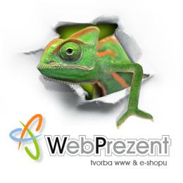 WebPrezent, tvorba webových stránek a SEO